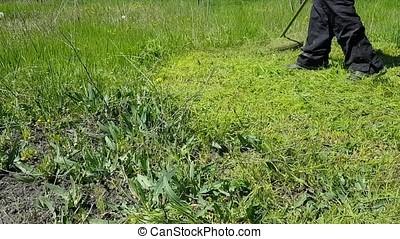 Gasoline Lawn Mower. Grass cutting in the garden.
