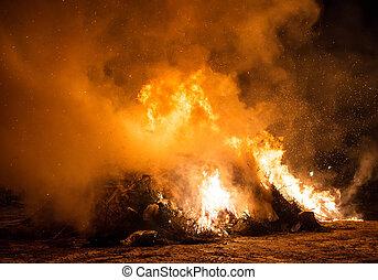 gaspillage, vieux, brûlé, arbres., incineration., déchets ménagers