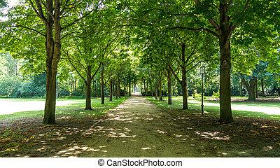 gasse, in, tiergarten, berlin