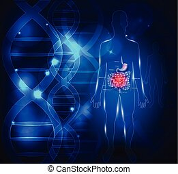 Gastrointestinal tract abstract scientific background with...