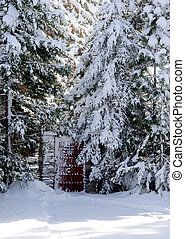 Gate in a snow wood