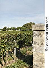 Gates to a vineyard