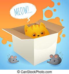 gatinho, caixa