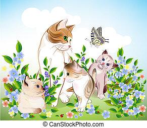 gatinhos, family., gato, meadow., feliz, ?ats