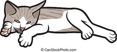 gatito, plano de fondo, acostado, blanco
