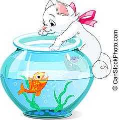 gatito, y, pez