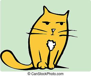 gato anaranjado