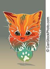 gato, animal, cartaz