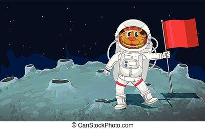 gato, astronauta, espaço