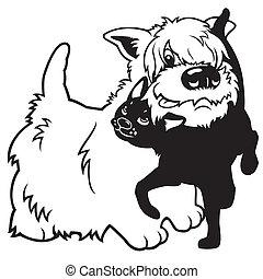 gato, caricatura, amistad, perro