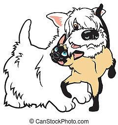 gato, caricatura, perro