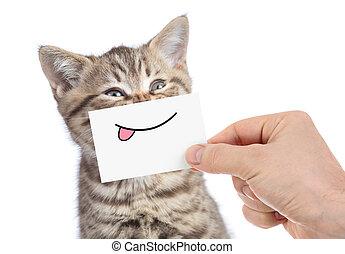 gato, con, divertido, lengua, sonrisa, aislado, blanco