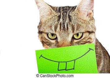 gato, con, un, sonrisa