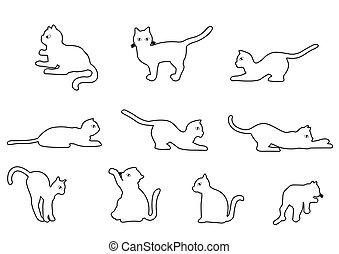 gato, contorno