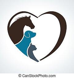gato, coração, cavalo, love., cão, junto, animal