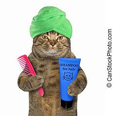 gato, em, turbante, segura, shampoo, e, pente, 2