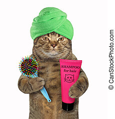 gato, em, turbante, segura, shampoo, e, pente