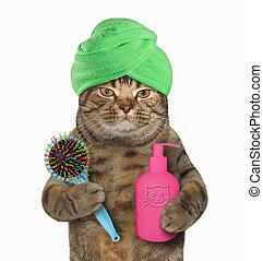 gato, em, verde, turbante, com, shampoo, e, pente