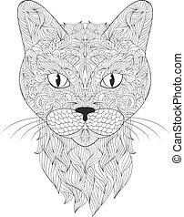gato, fondo blanco, cabeza