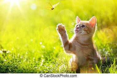 gato, gatito, /, arte, joven, lit, caza, mariposa, espalda