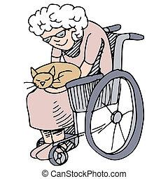 gato, idoso, amante