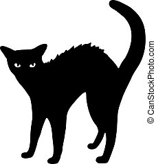 gato, negro