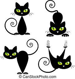 gato negro, con, ojos verdes