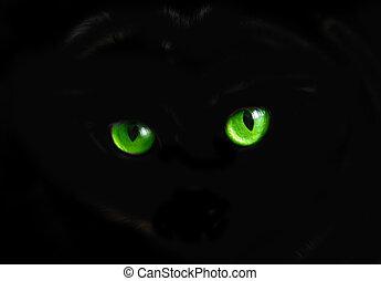 gato, olhos, em, escuro