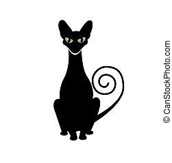 gato preto, silueta