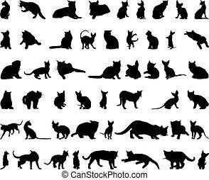 gato, siluetas, conjunto