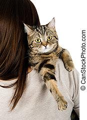 gato, sobre una espalda