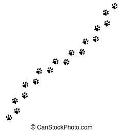gato, trilhas, vetorial, ilustração, ou, rastro, cão