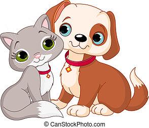 gato, y, perro