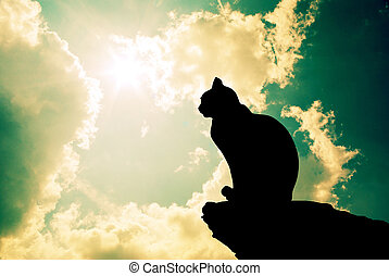 gato, y, profundo, cielo