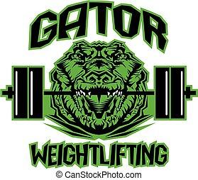 gator, 重量挙げ