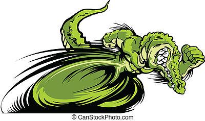 gator, croc, maskotka, graficzny, albo, biegi