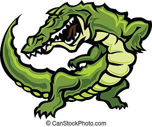gator, o, alligatore, mascotte, corpo, vect