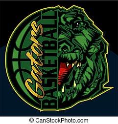gators basketball