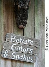 gators, strzec się, węże