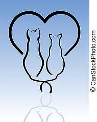gatos, amor