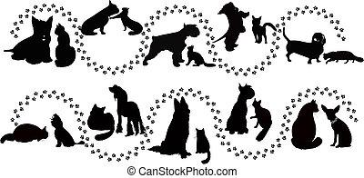 gatos, animales, Perros