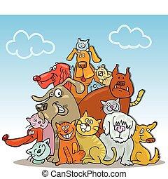 gatos, cachorros