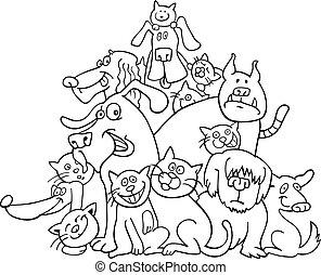 gatos, colorido, perros
