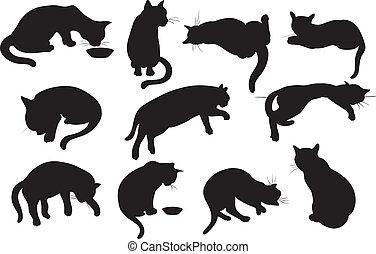 gatos, conjunto, silueta