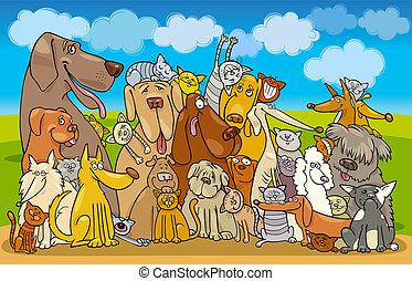 gatos, grupo, perros
