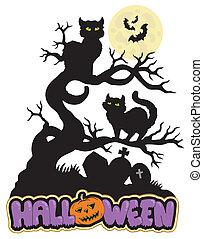 gatos, halloween, señal