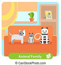 gatos, jogo, sala, família