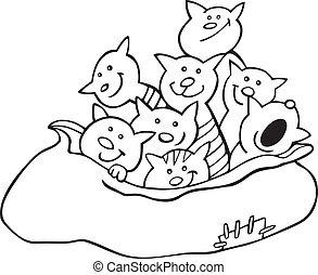 gatos, libro colorear, saco