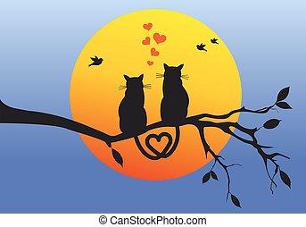 gatos, ligado, filial árvore, vetorial