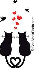 gatos, pássaros, vetorial, corações